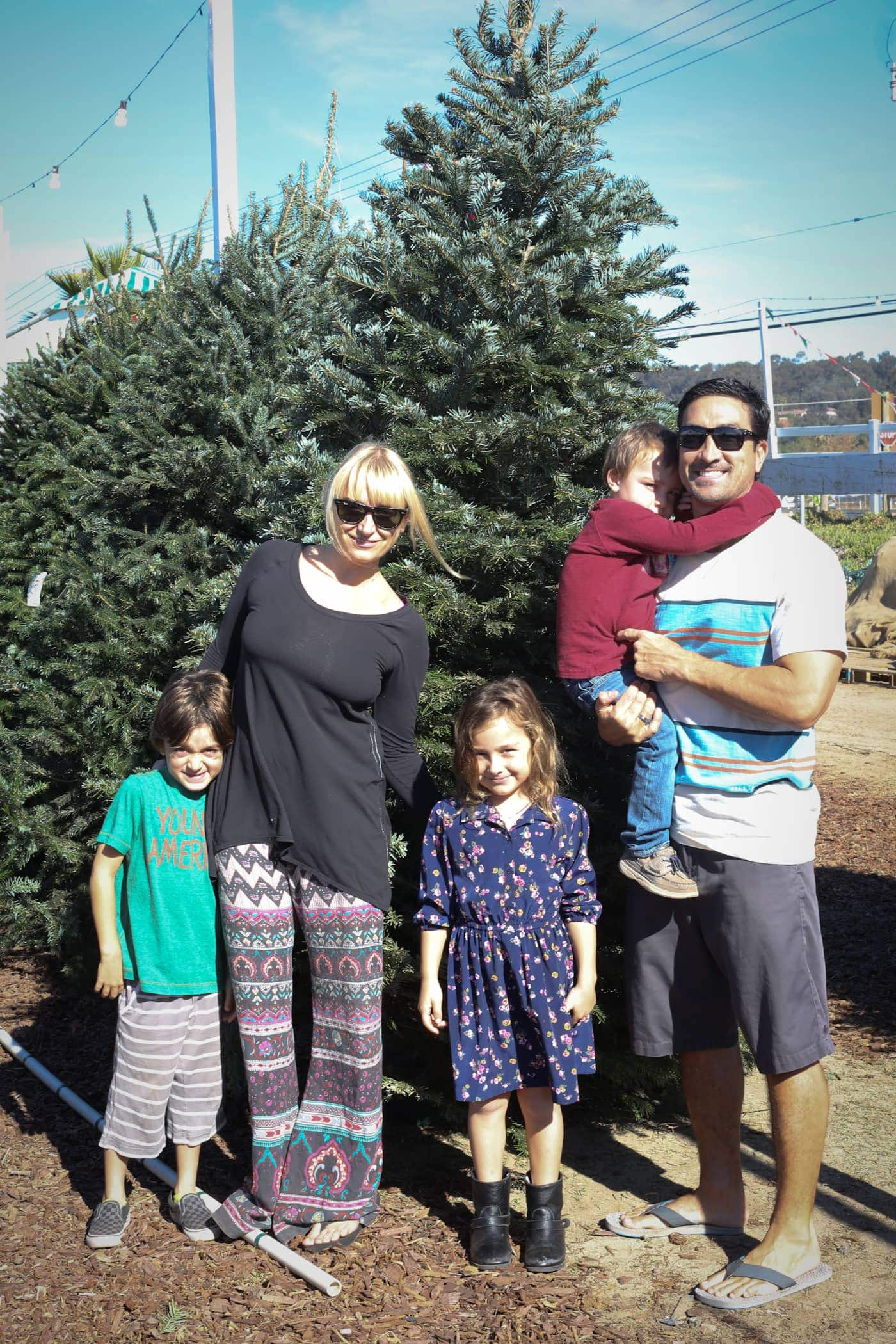 Pinery Christmas Trees