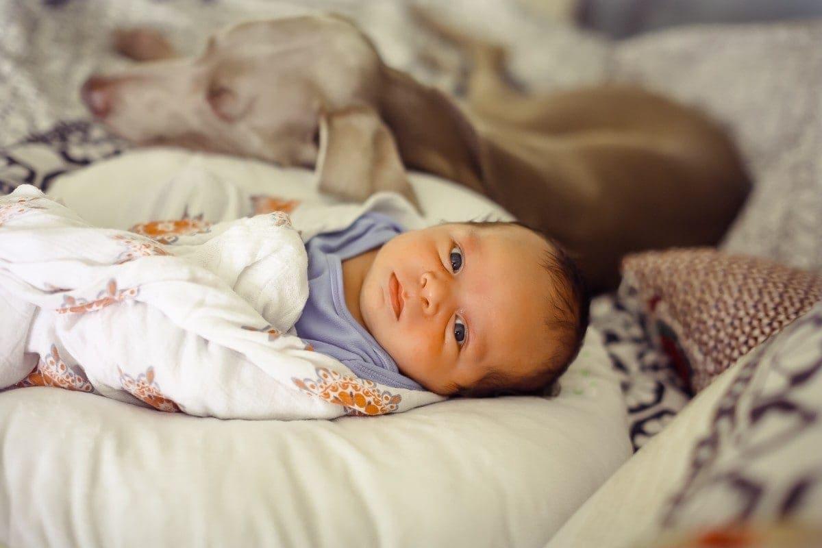 baby awake