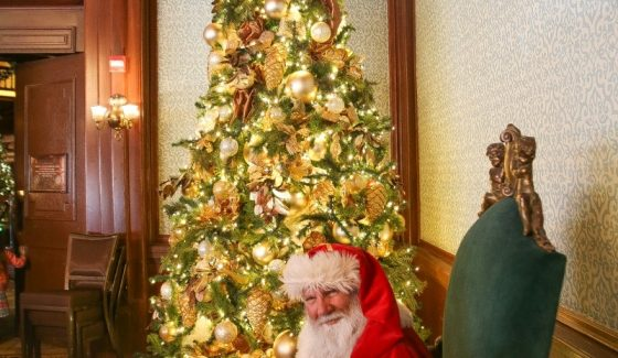 santa with christmas tree