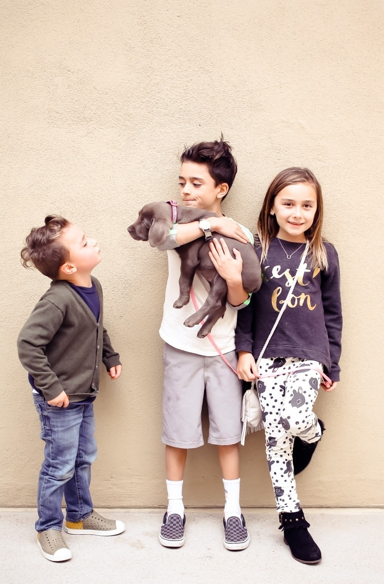 kids and their puppy