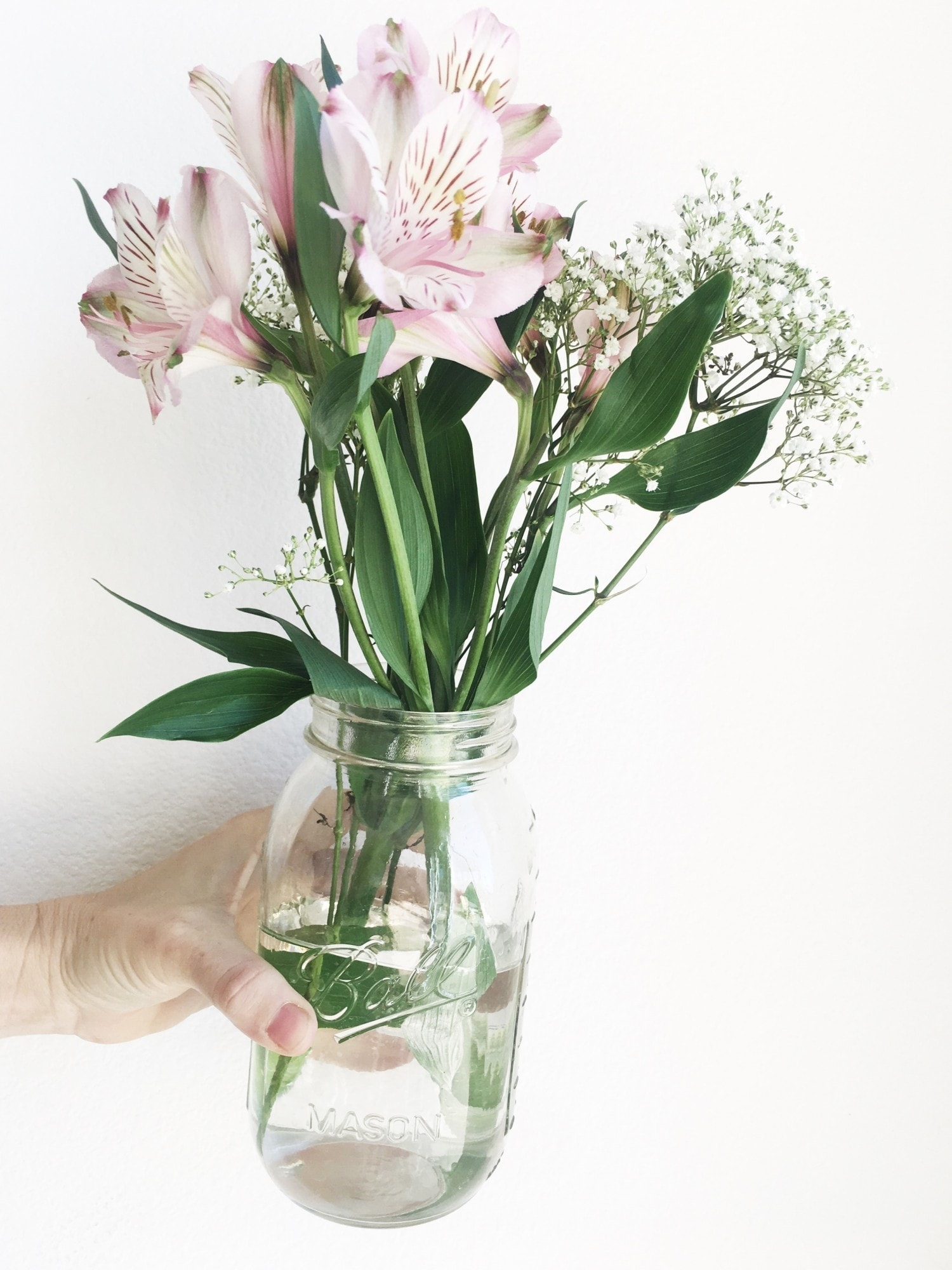 flowers in jar