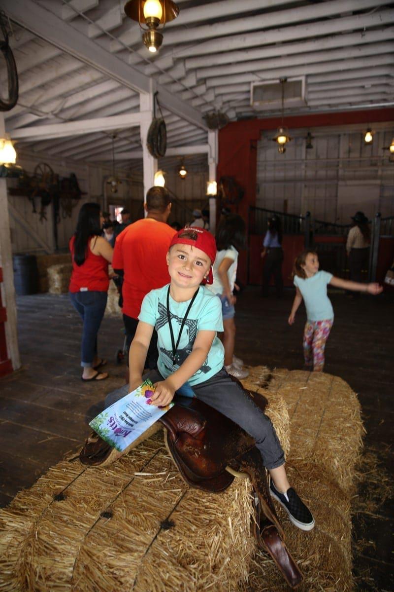 boy sitting on hay