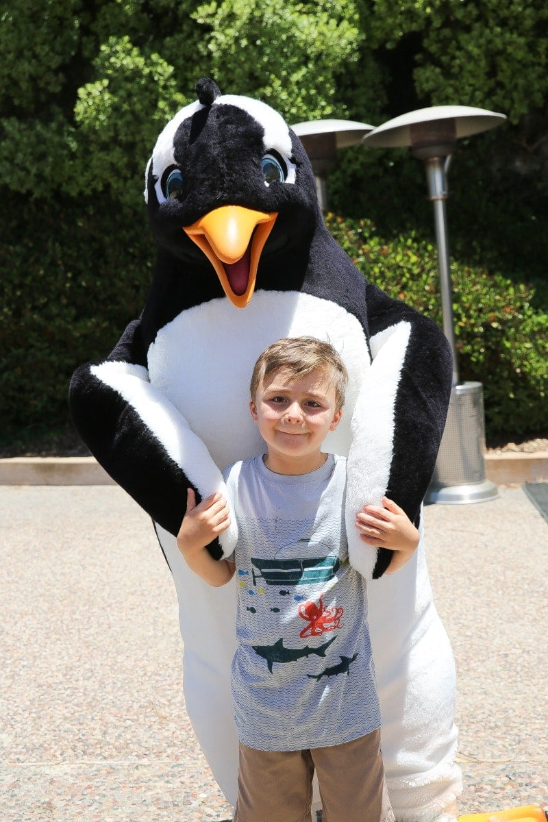 boy with penguin at seaworld