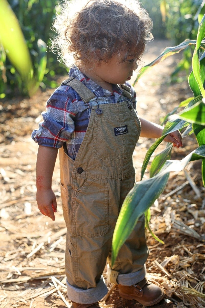 Brody in his adorable roll-up canvas overalls