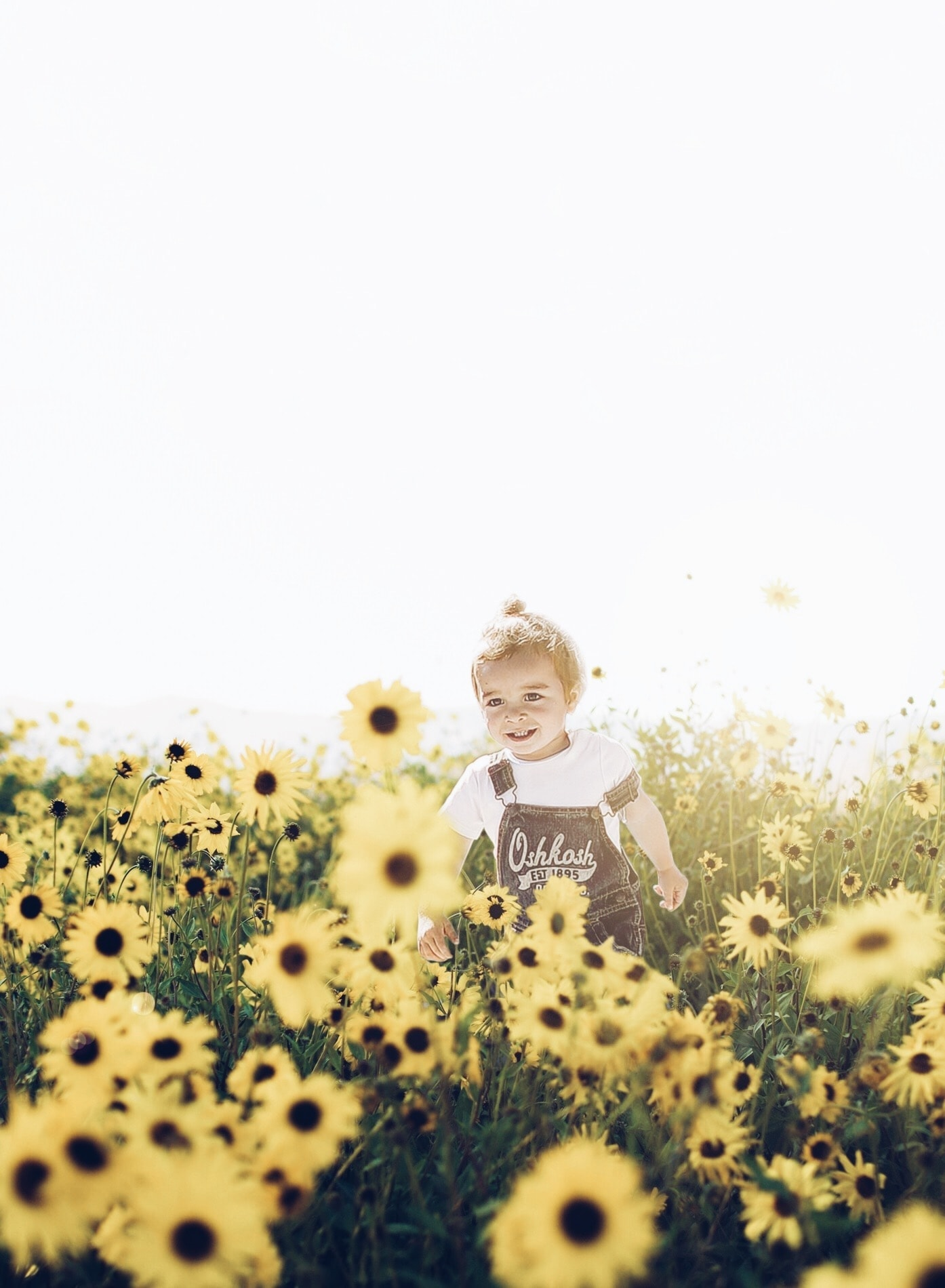 Baby Brody in a field of daisies