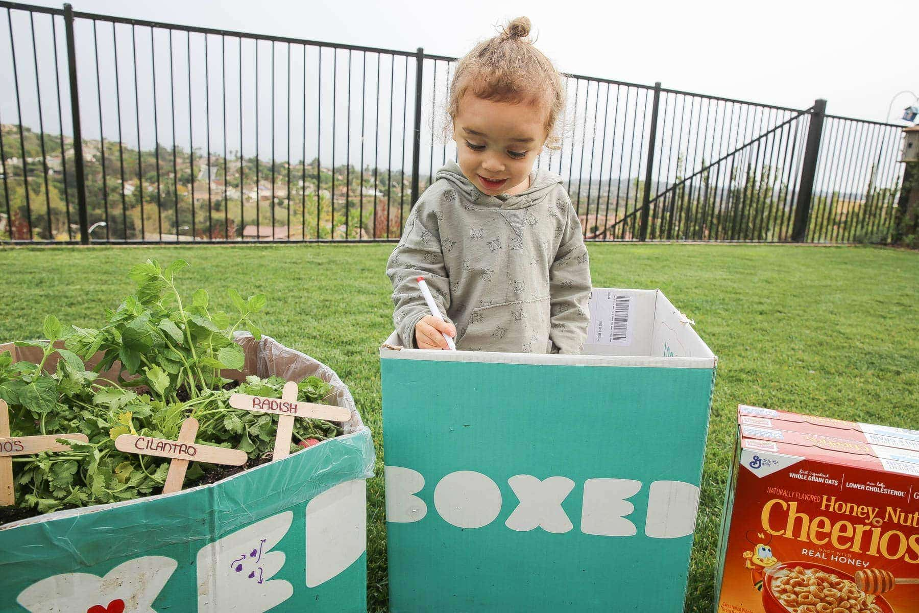 Child decorating the Boxed and Honey Nut Cheerios mini garden