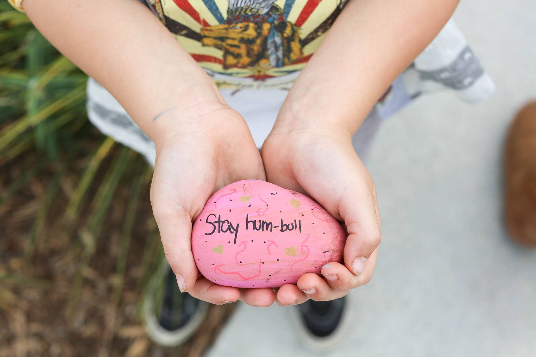 citygirlgonemom and Ferdinand kindness rocks project
