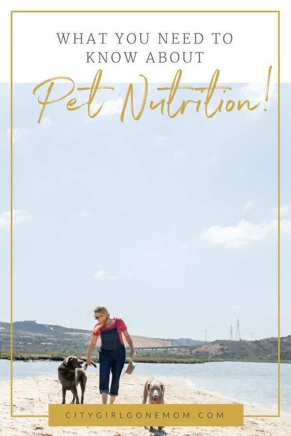 Fighting the beg and everything you need to know about Pet Nutrition! All pets have individual needs when it comes to diet! #petarticles #petnutrition #healthypets #pettips #dogproducts #healthydog #dogdiet #dogarticles #dogs #cats #citygirlgonemom