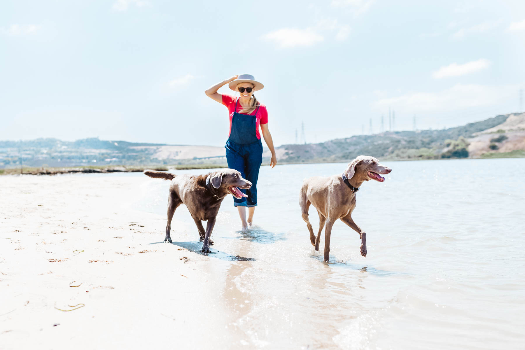 girl walking dogs on beach