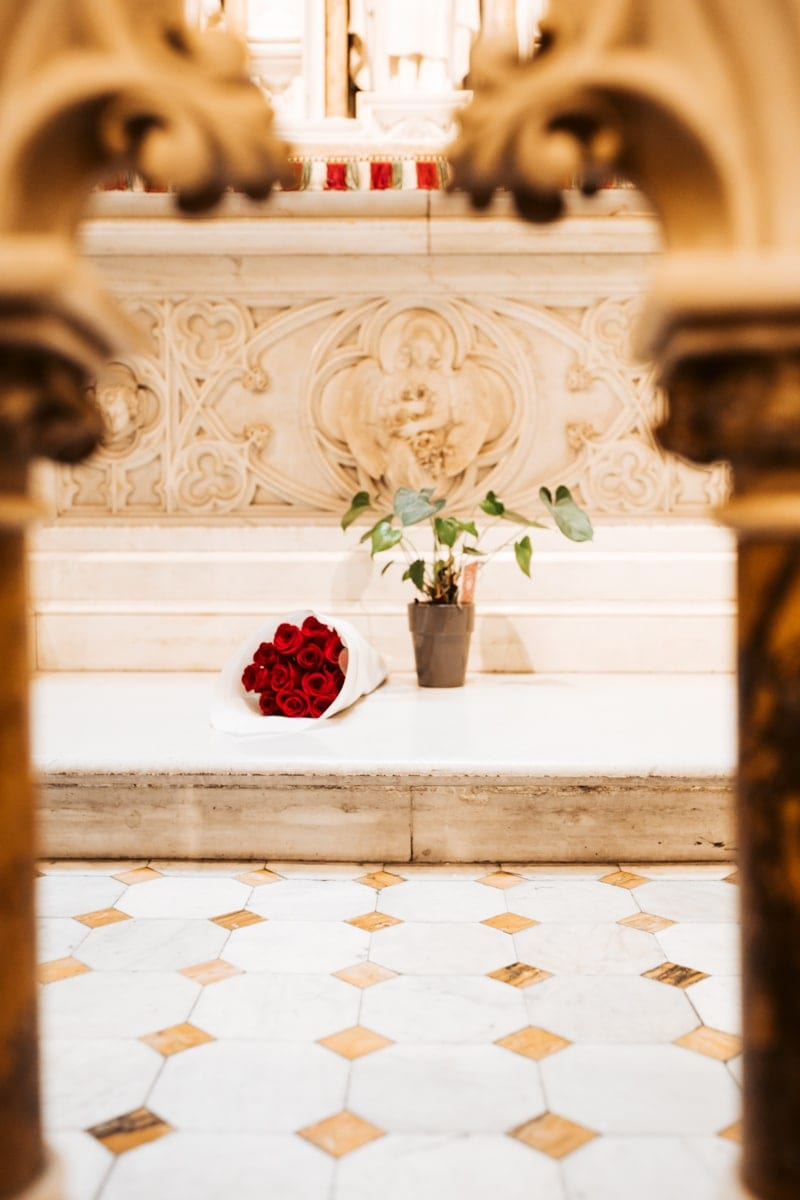 flowers at st Patricks cathedral