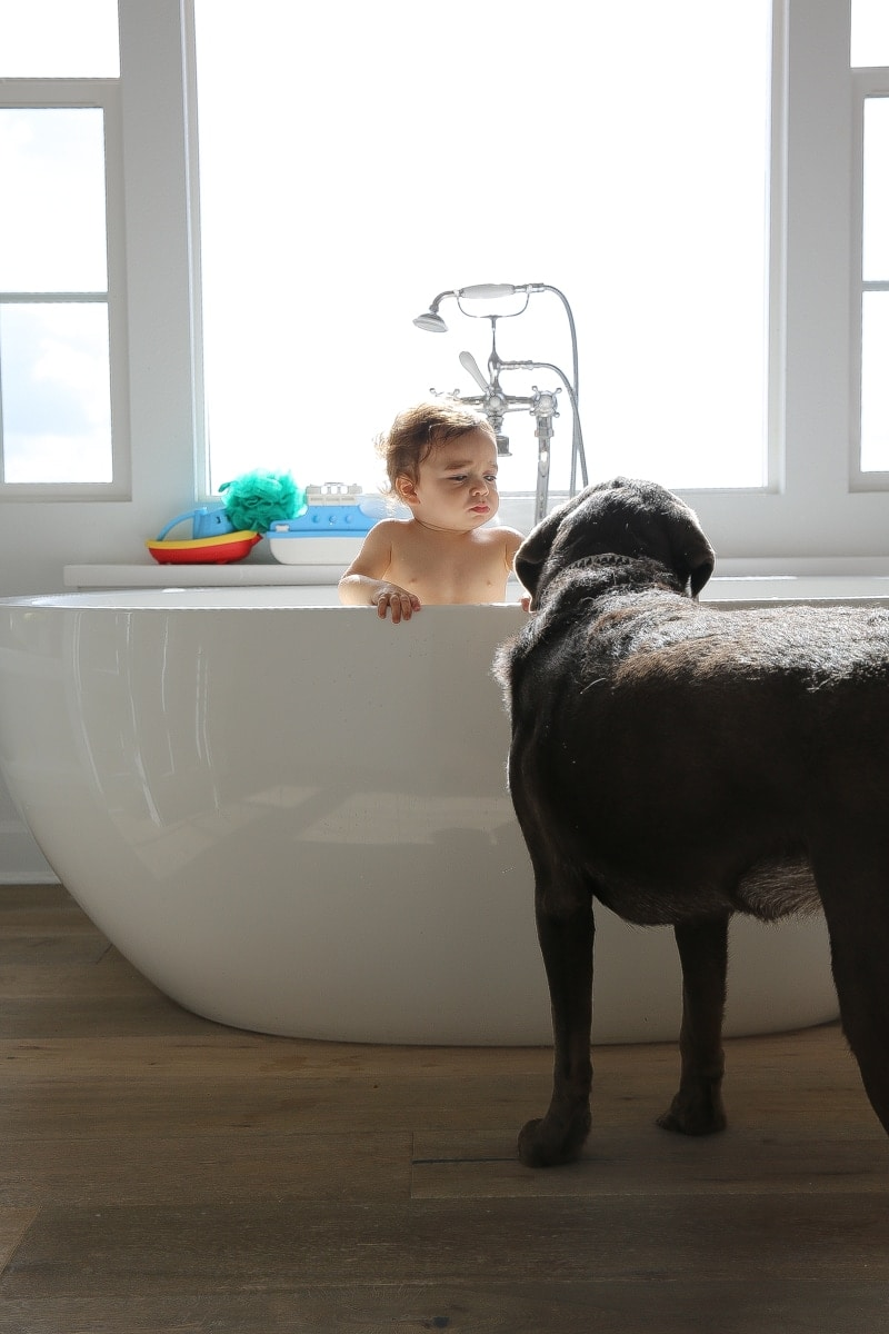 puppy and baby in bath