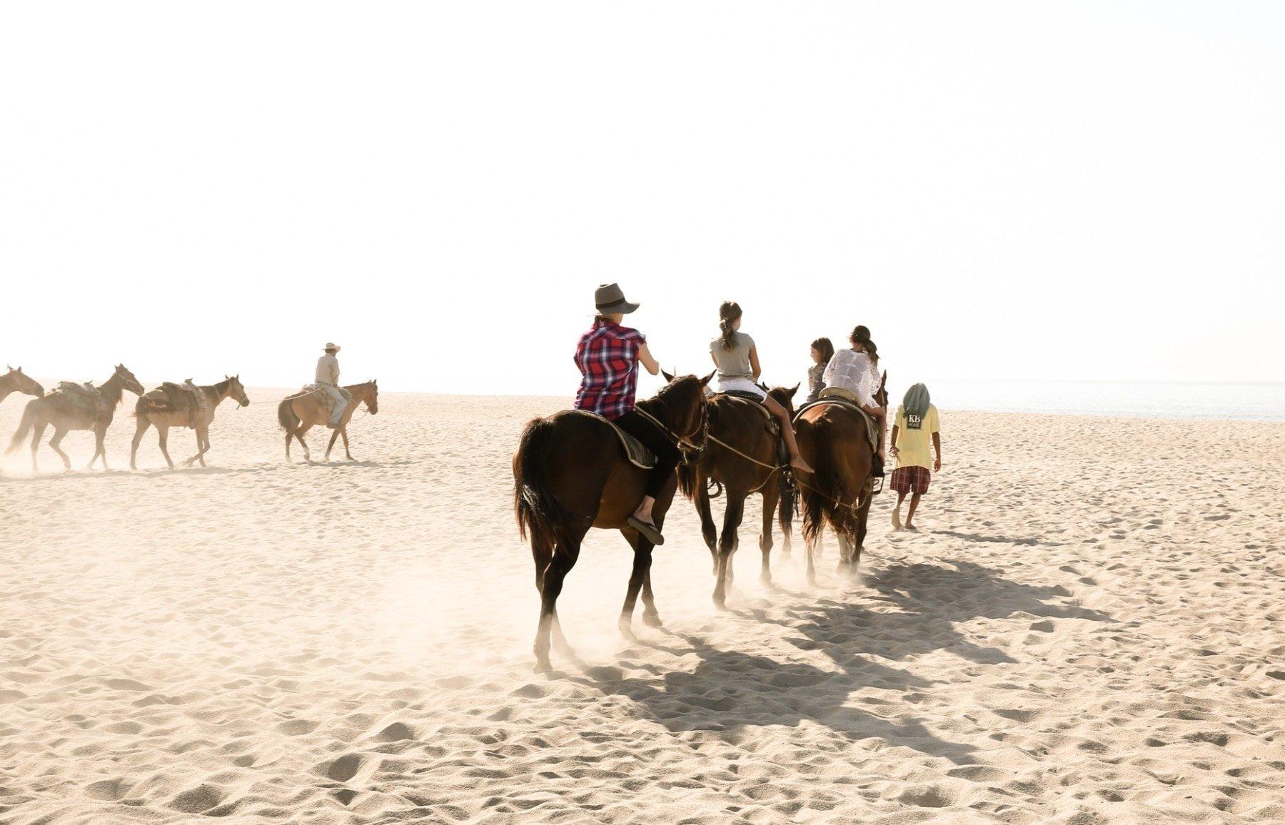 family riding horses