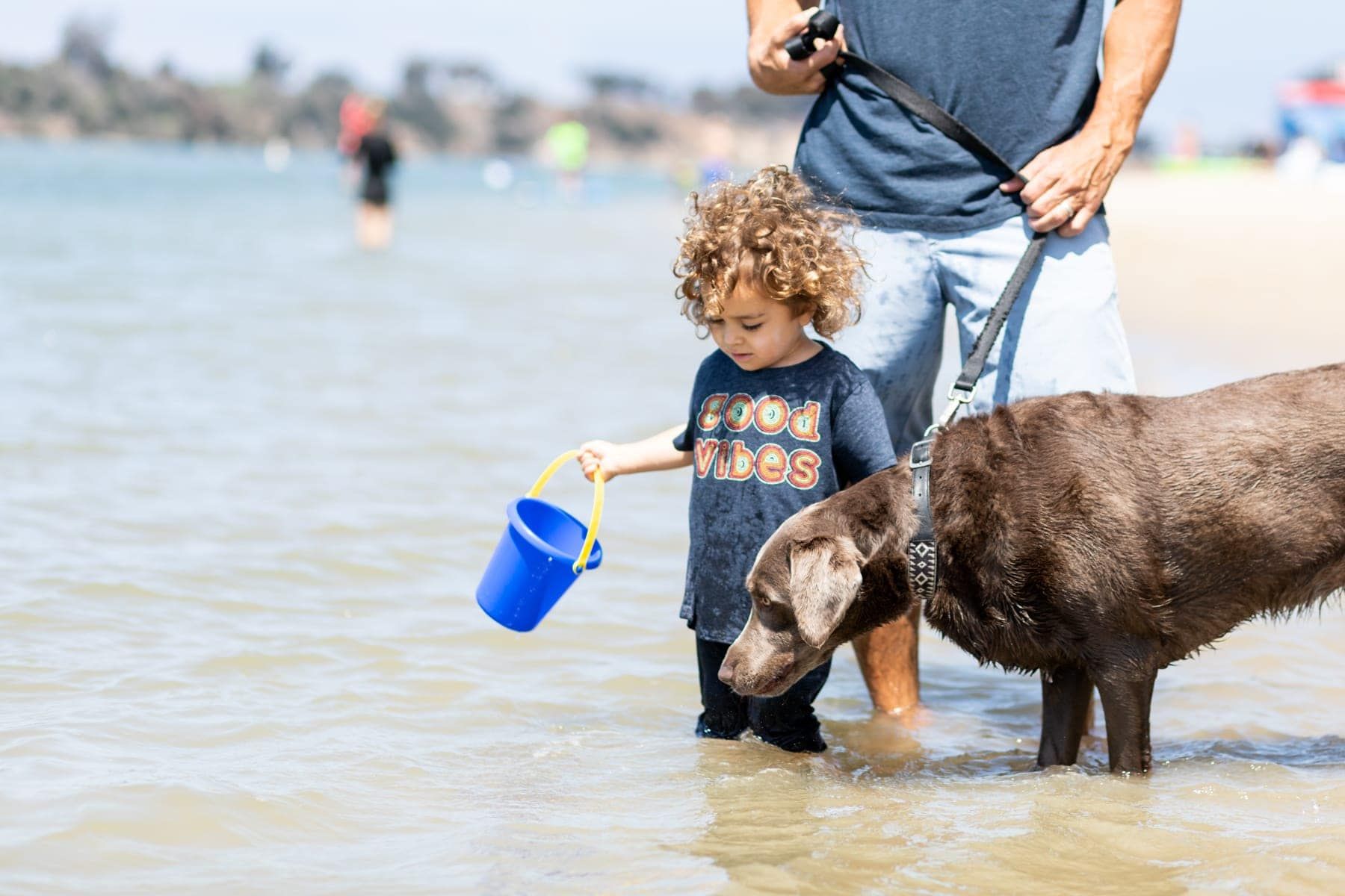 toddler and dog at beach
