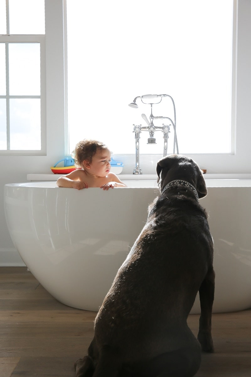 child in bath with dog