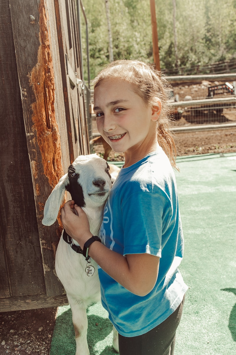 goat and girl