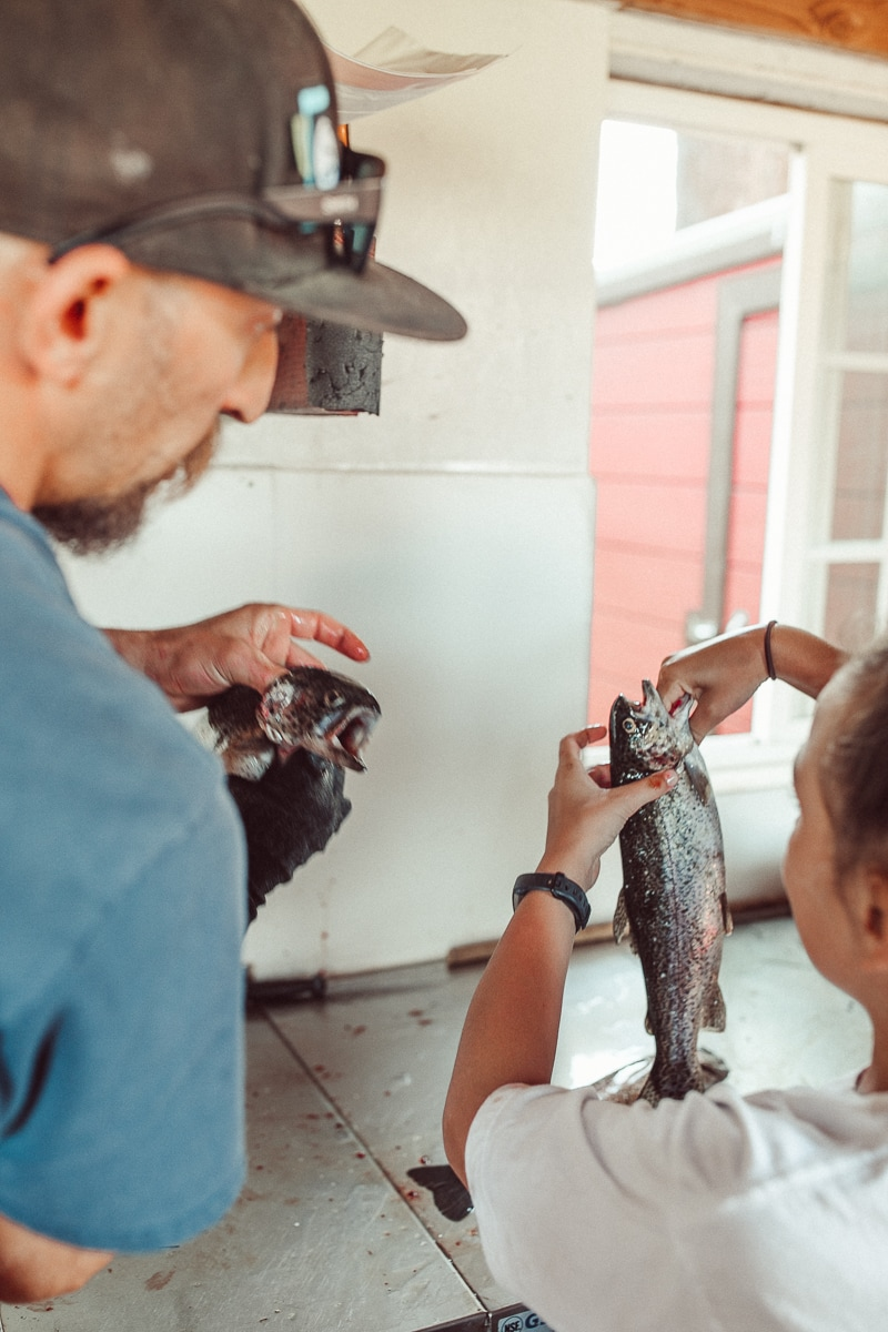gutting fish