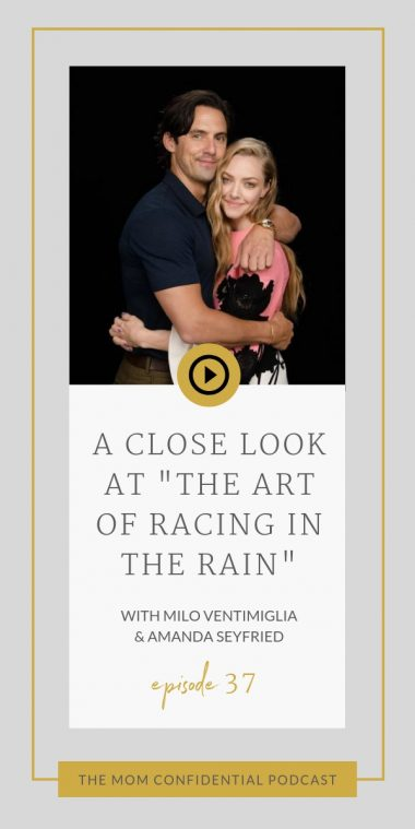 "A Close Look At ""The Art of Racing in the Rain"""