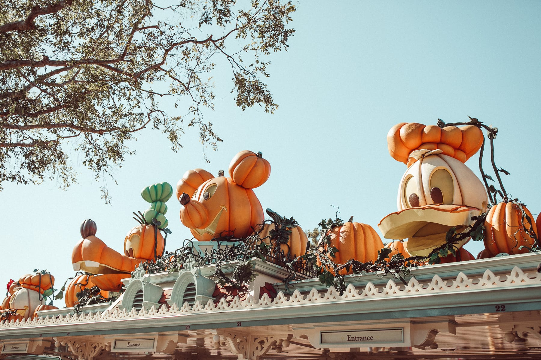 disneyland halloween entrance