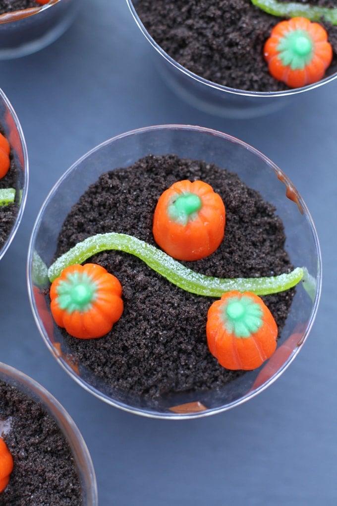 pumpkin patch treat
