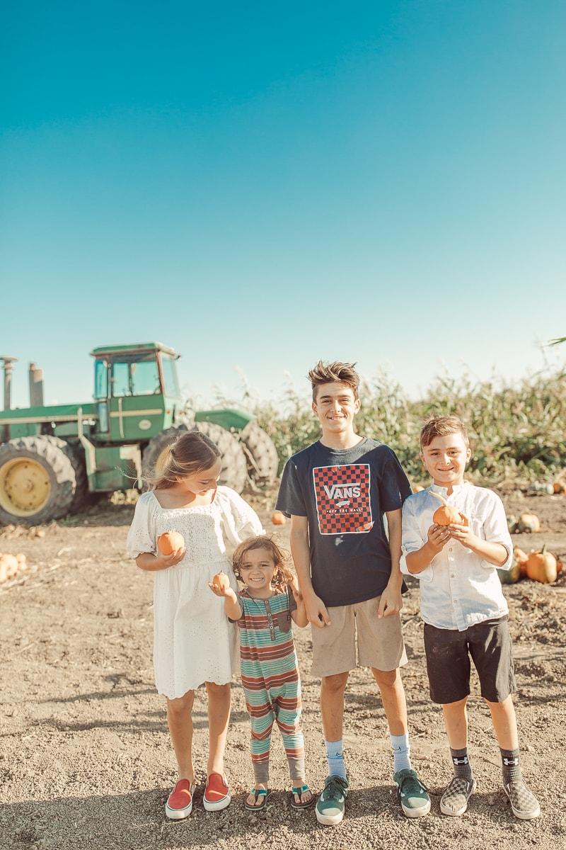 siblings in pumpkin patch