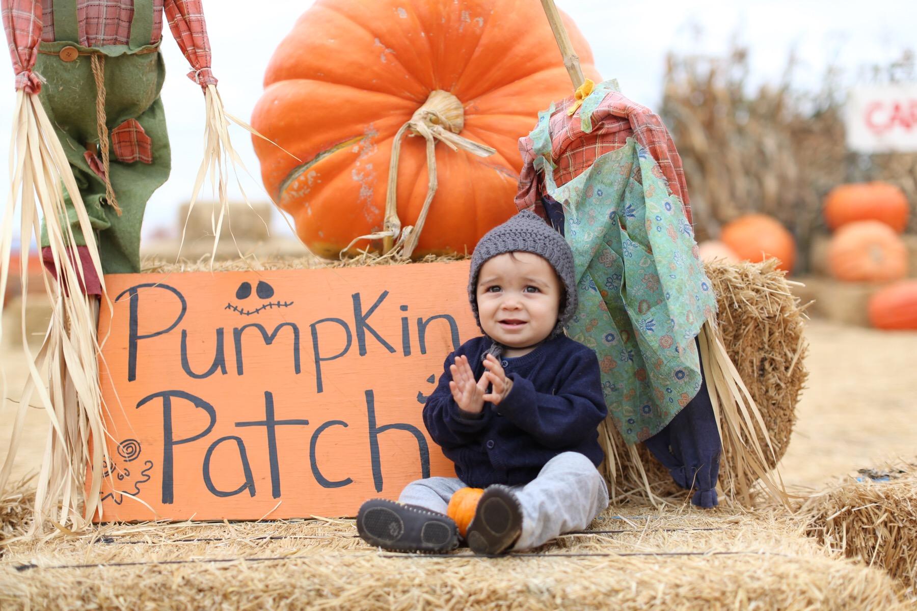 baby in pumpkin patch