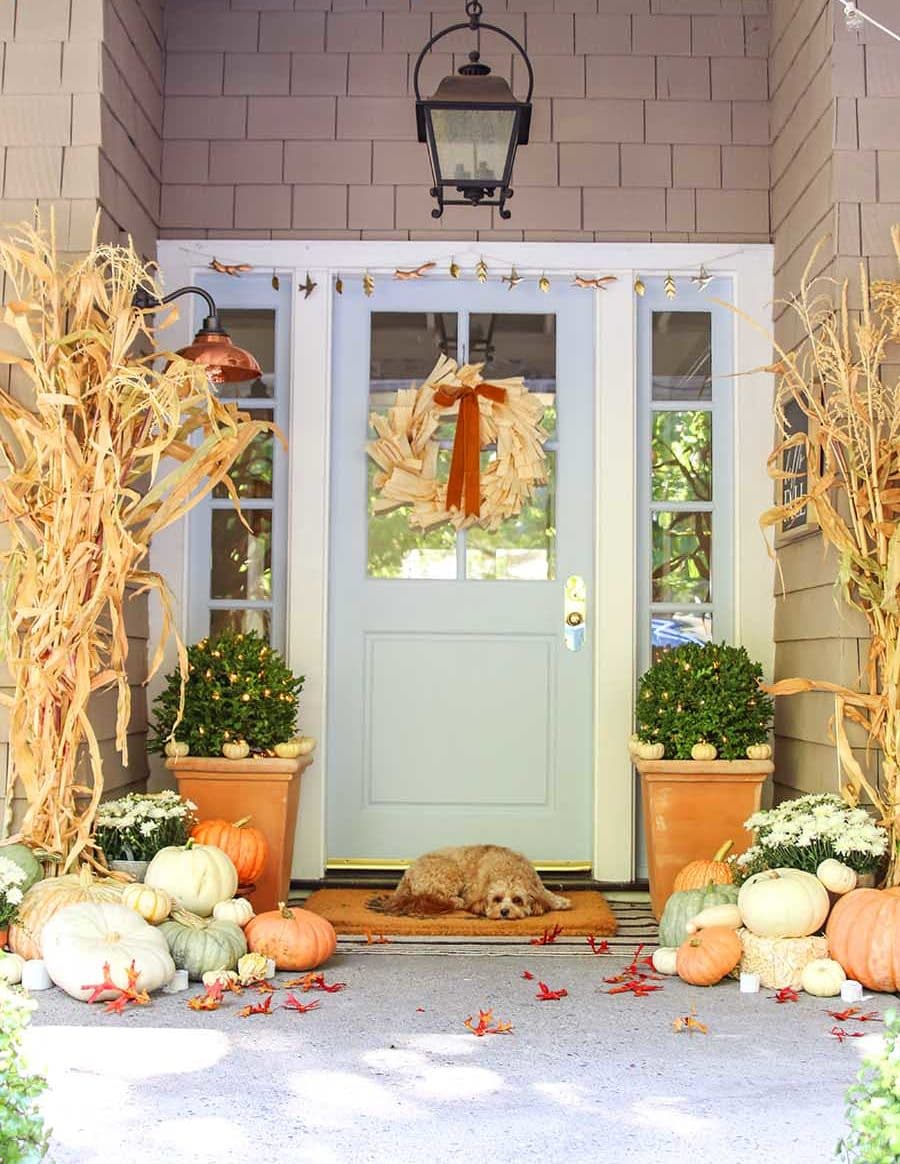 fall front porch decor with dog