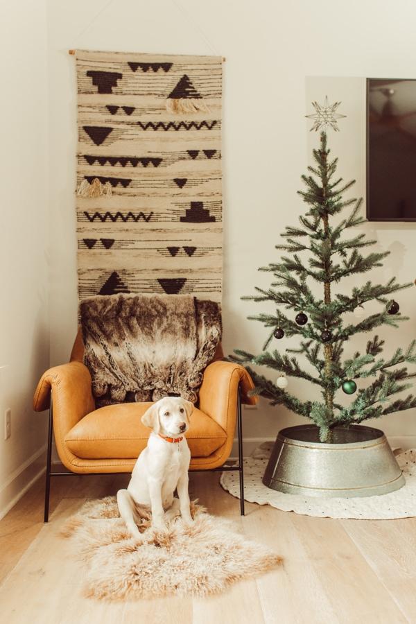 dog by christmas tree