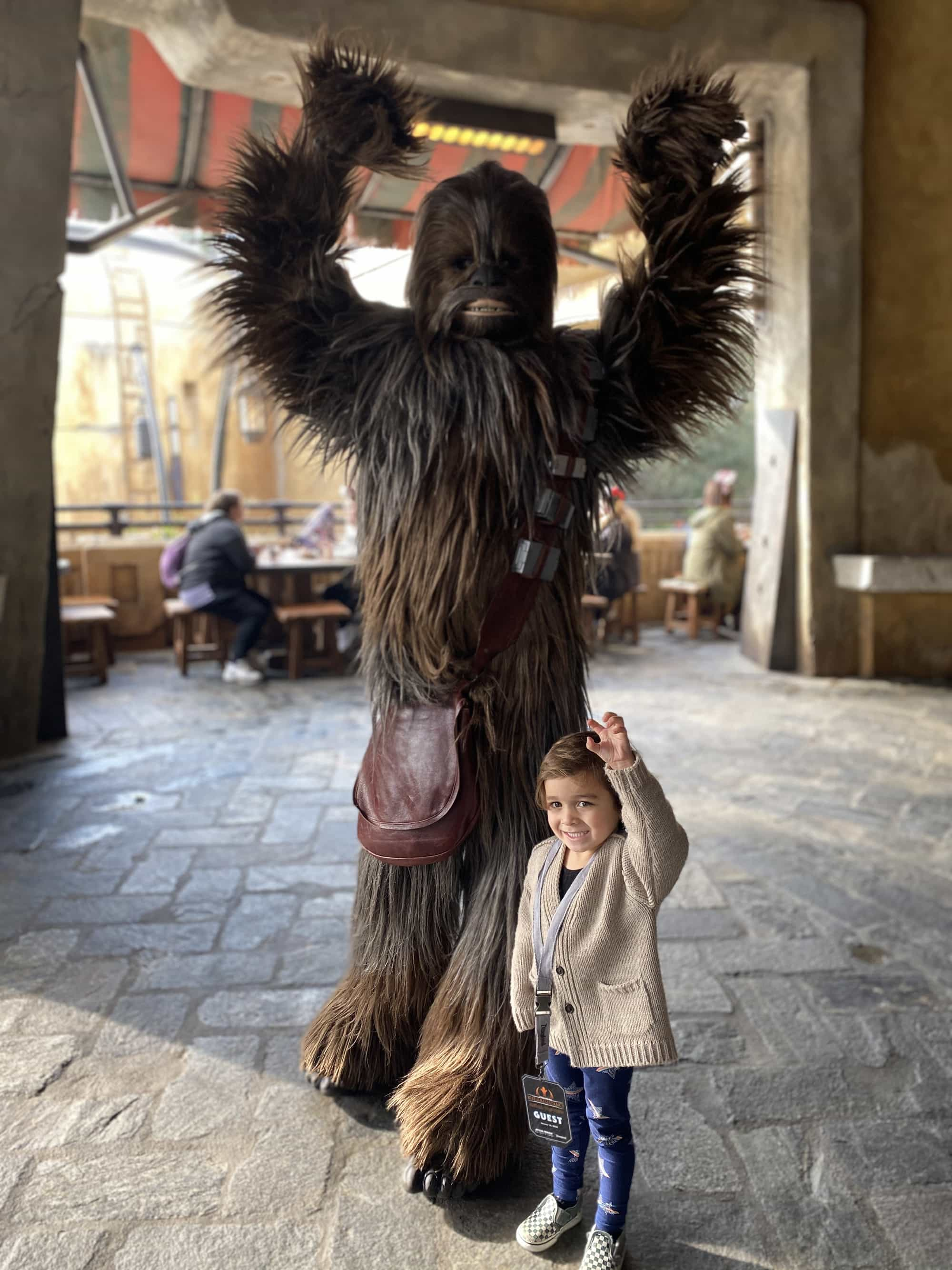 toddler posing with chewbacca at disneyland star wars