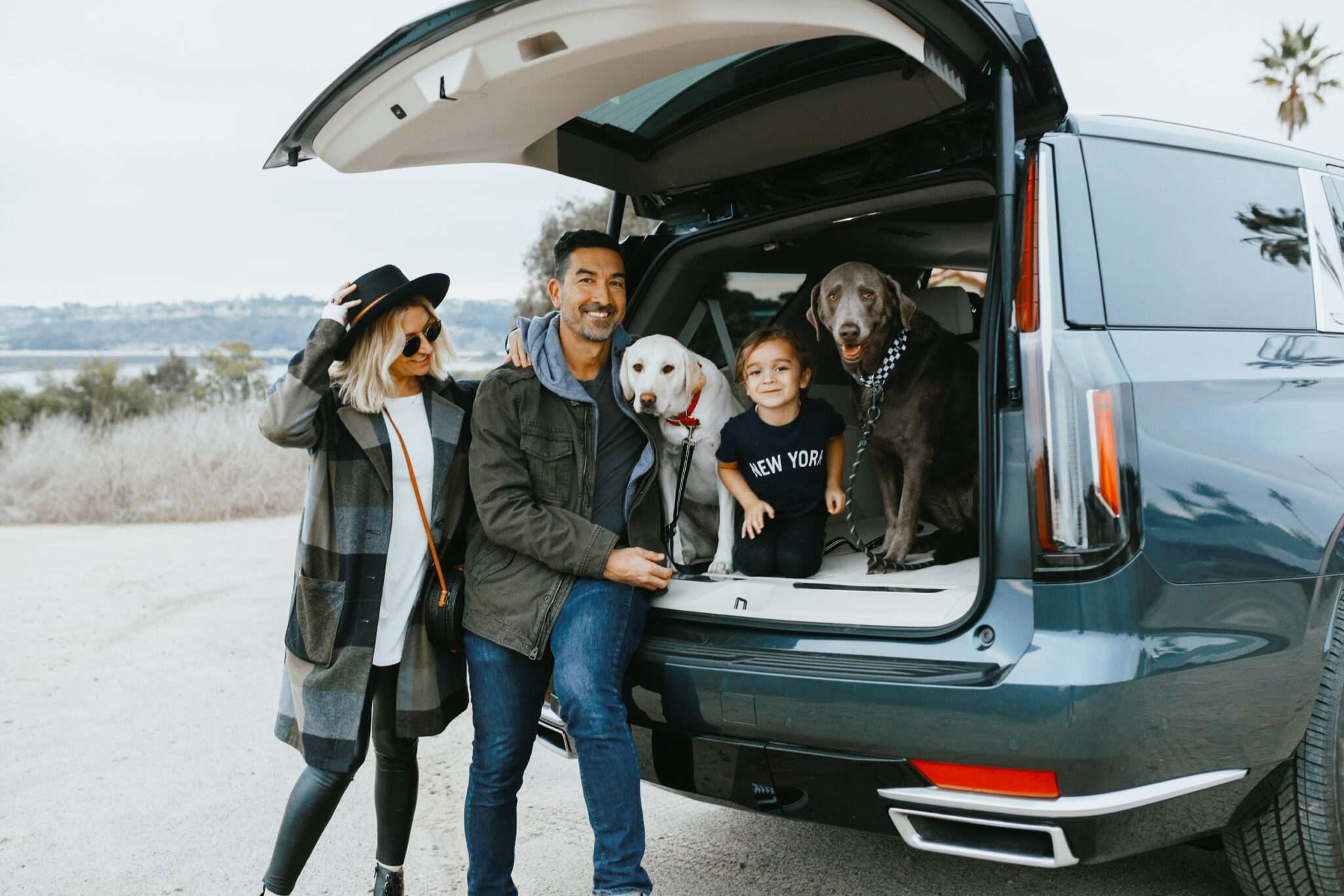 family in car with dogs