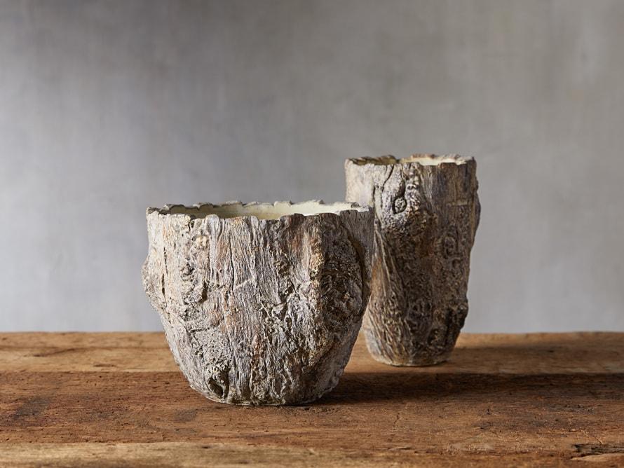driftwood vases