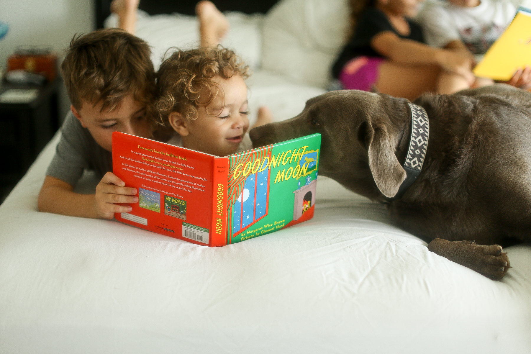 boys reading with dog