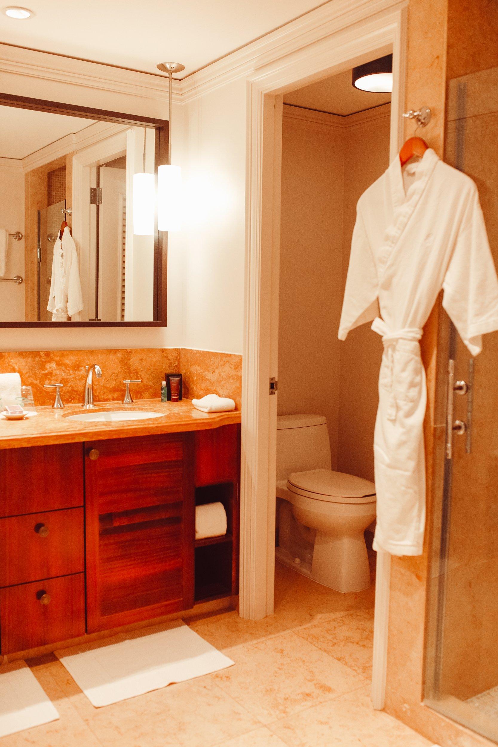 hotel restroom with bath robe