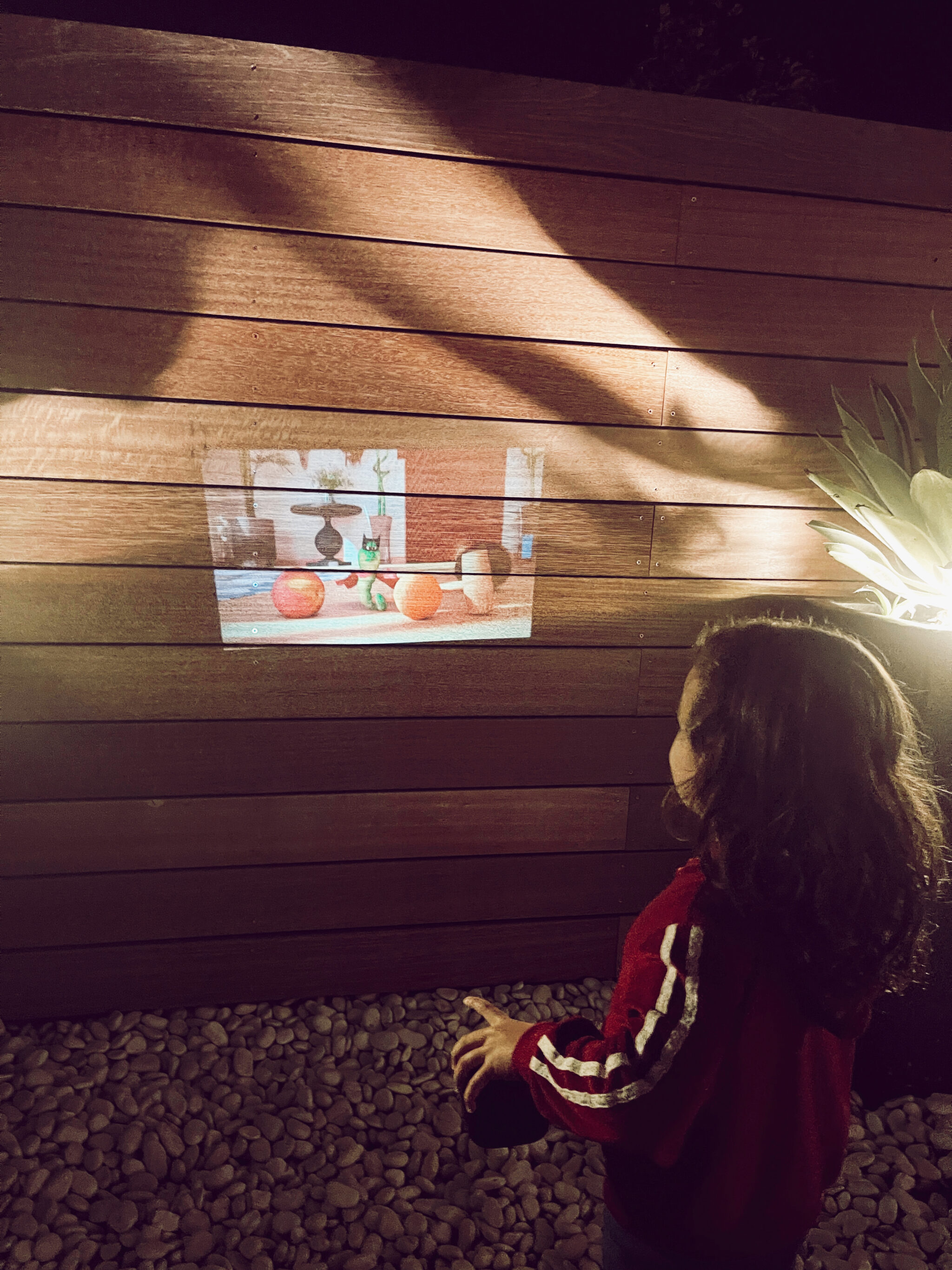 kid watching projection