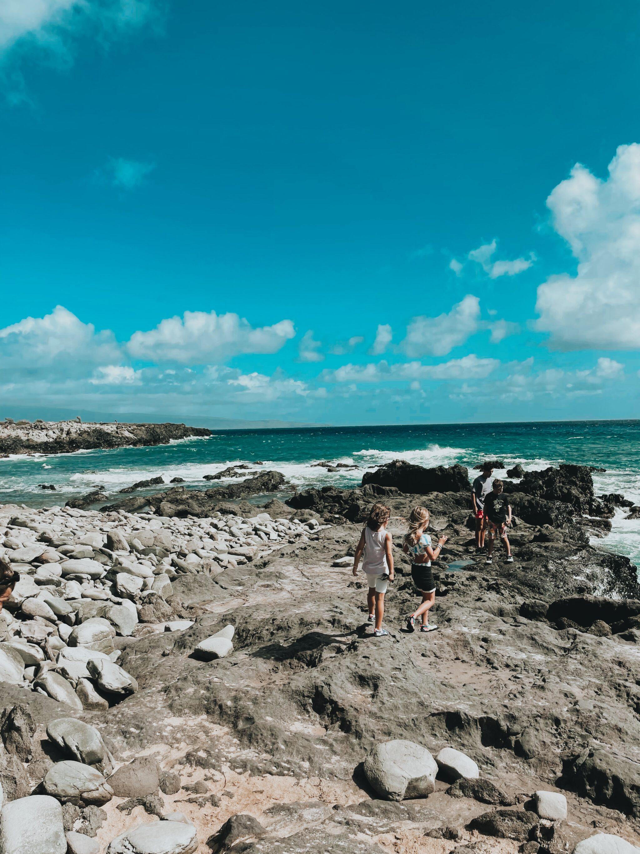kids exploring tidepools in maui